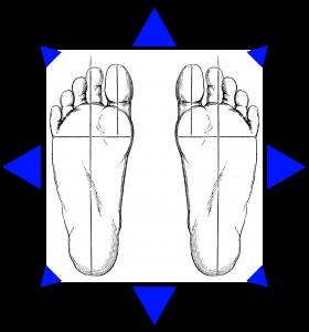 feet wiki