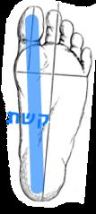 one feet inner side